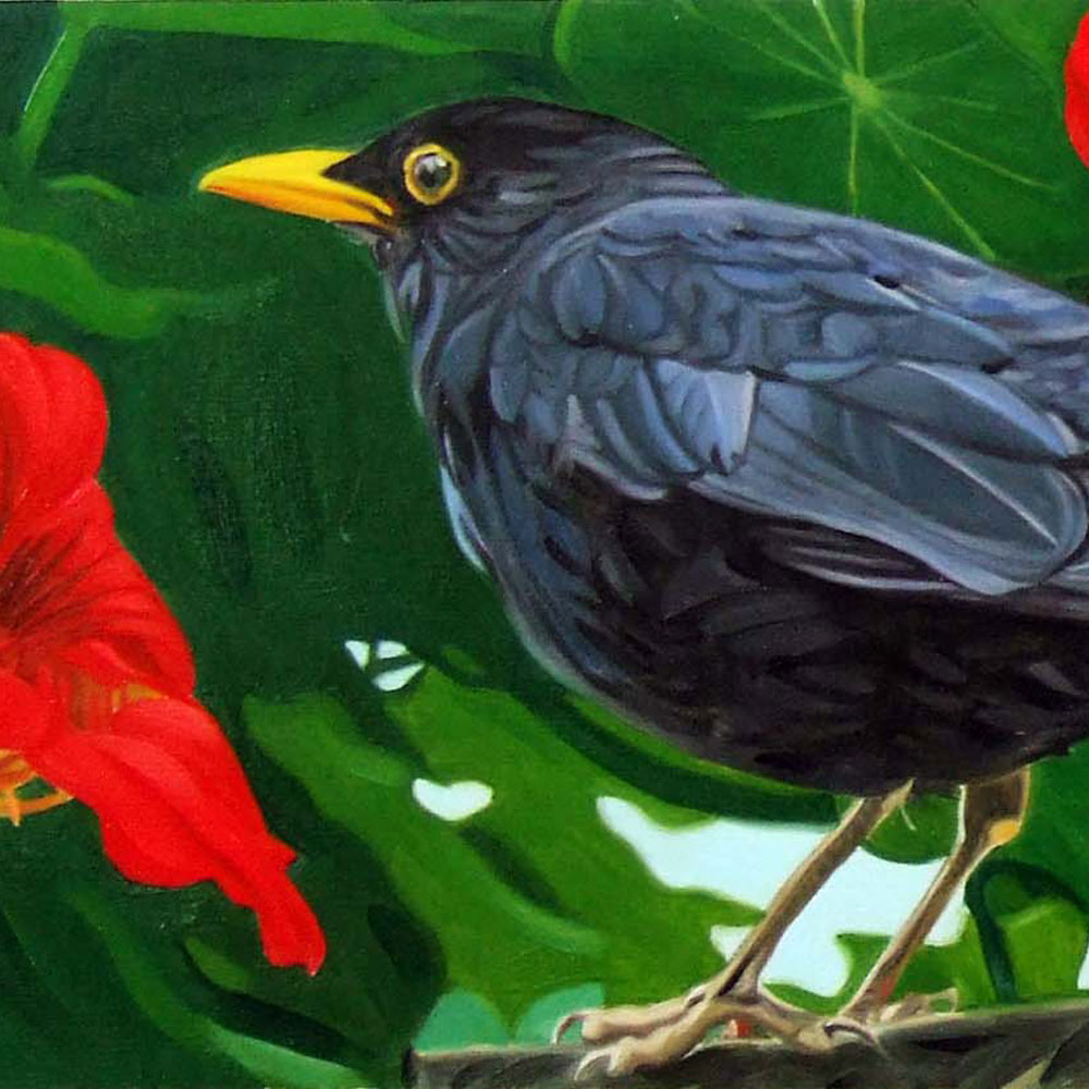 Deborah-Illingworth_-Blackbird-and-Nasturtiums-Final